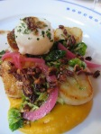 the Special - scallops and poached egg (yum)